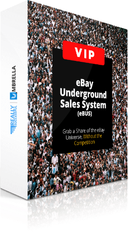 Barry Plaskow's eBay Underground Sales System Review