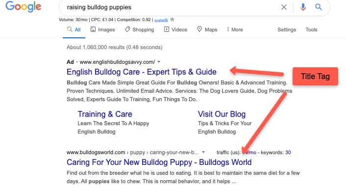 Title Tag Search Result Example
