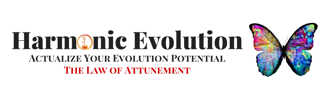 Joe Heller Harmonic Evolution