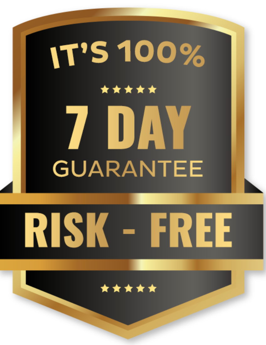 daily content profits - no risk