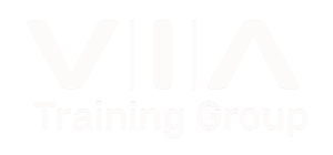 VIA Training Group Logo