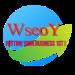wseoy logo