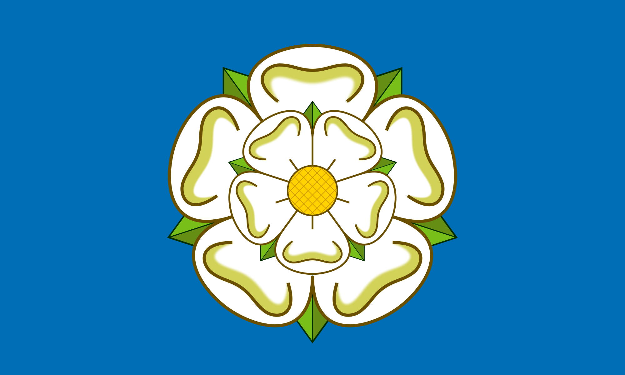 yorkshire seo flag