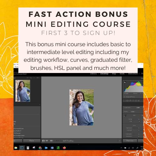 beginner to intermediate editing in Lightroom