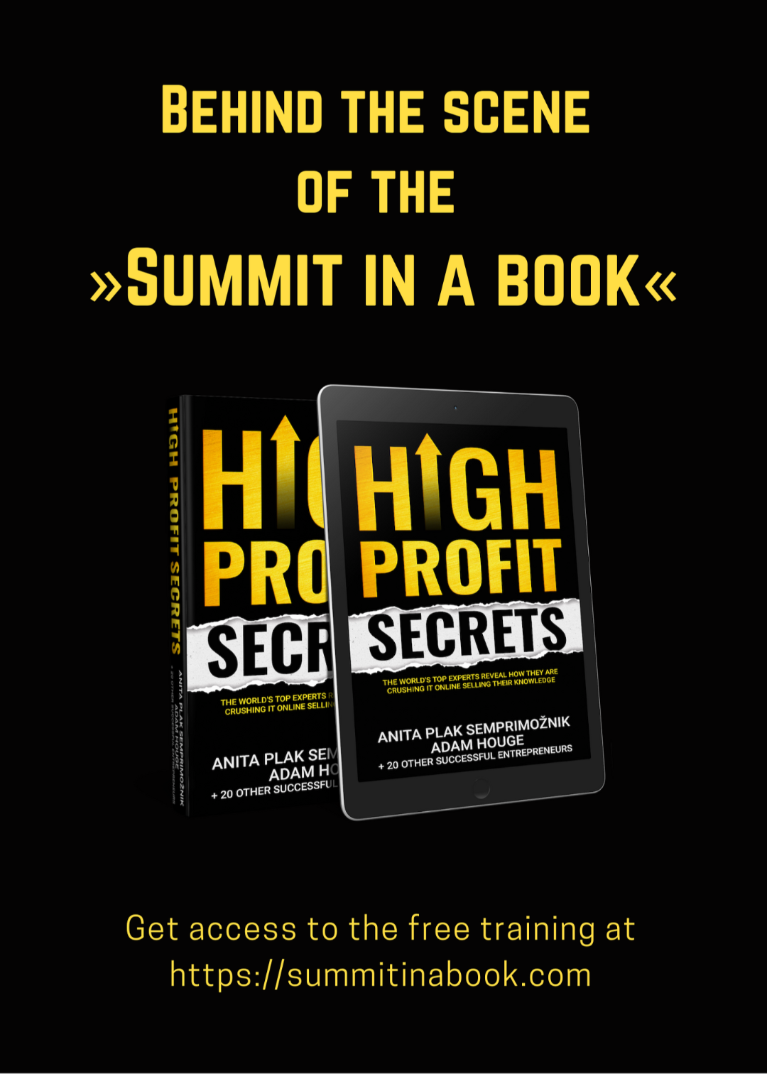 Summit in a book free training