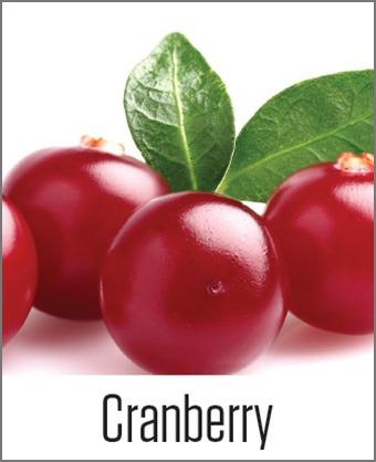 MOA Cranberry