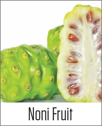 MOA Noni Fruit