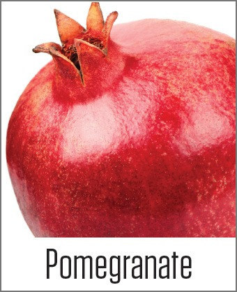 MOA Pomegranate