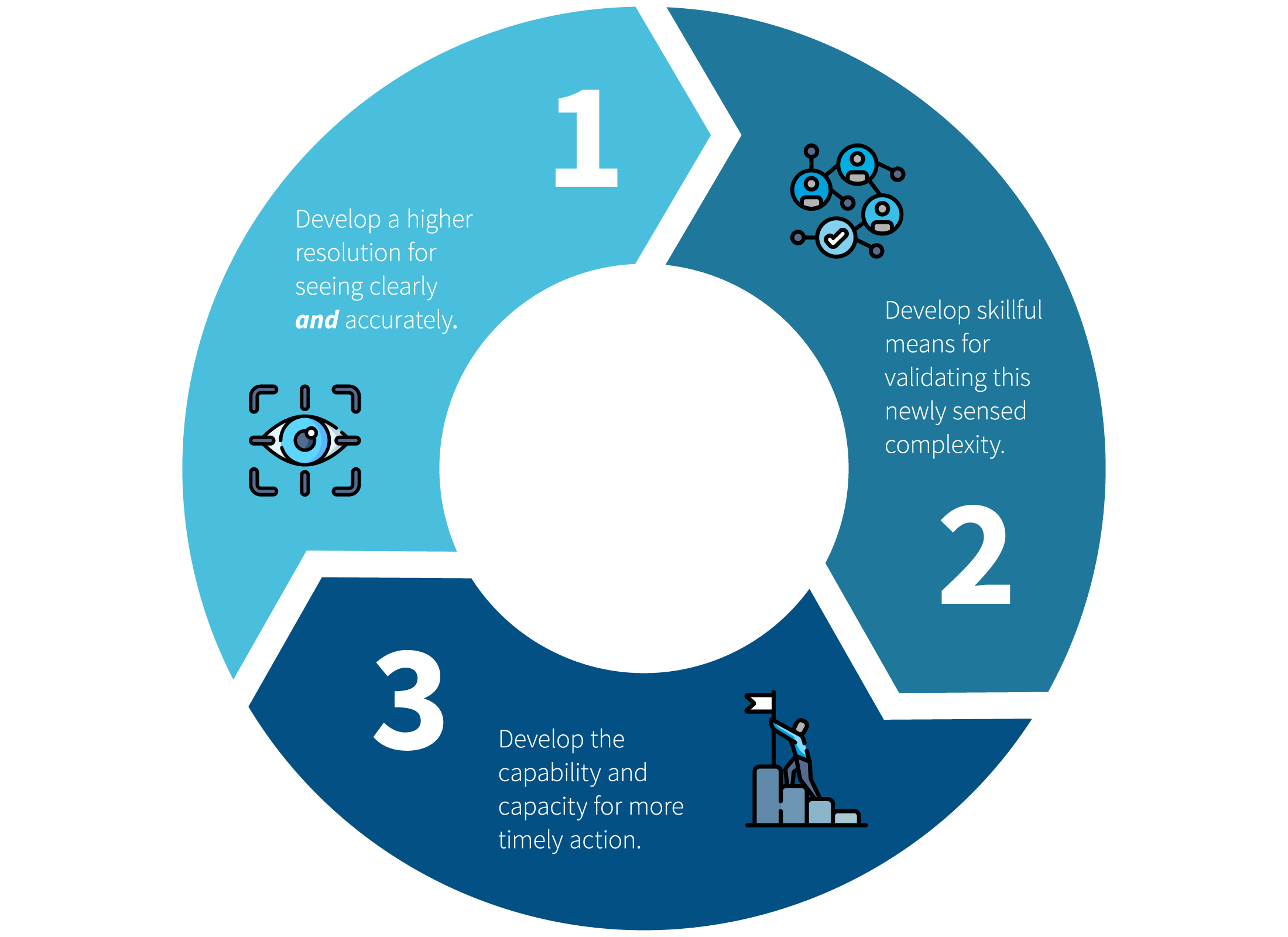 Developmental Coaching Process Diagram