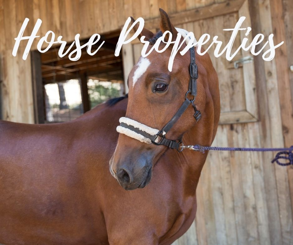 San Diego Horse Property for Sale