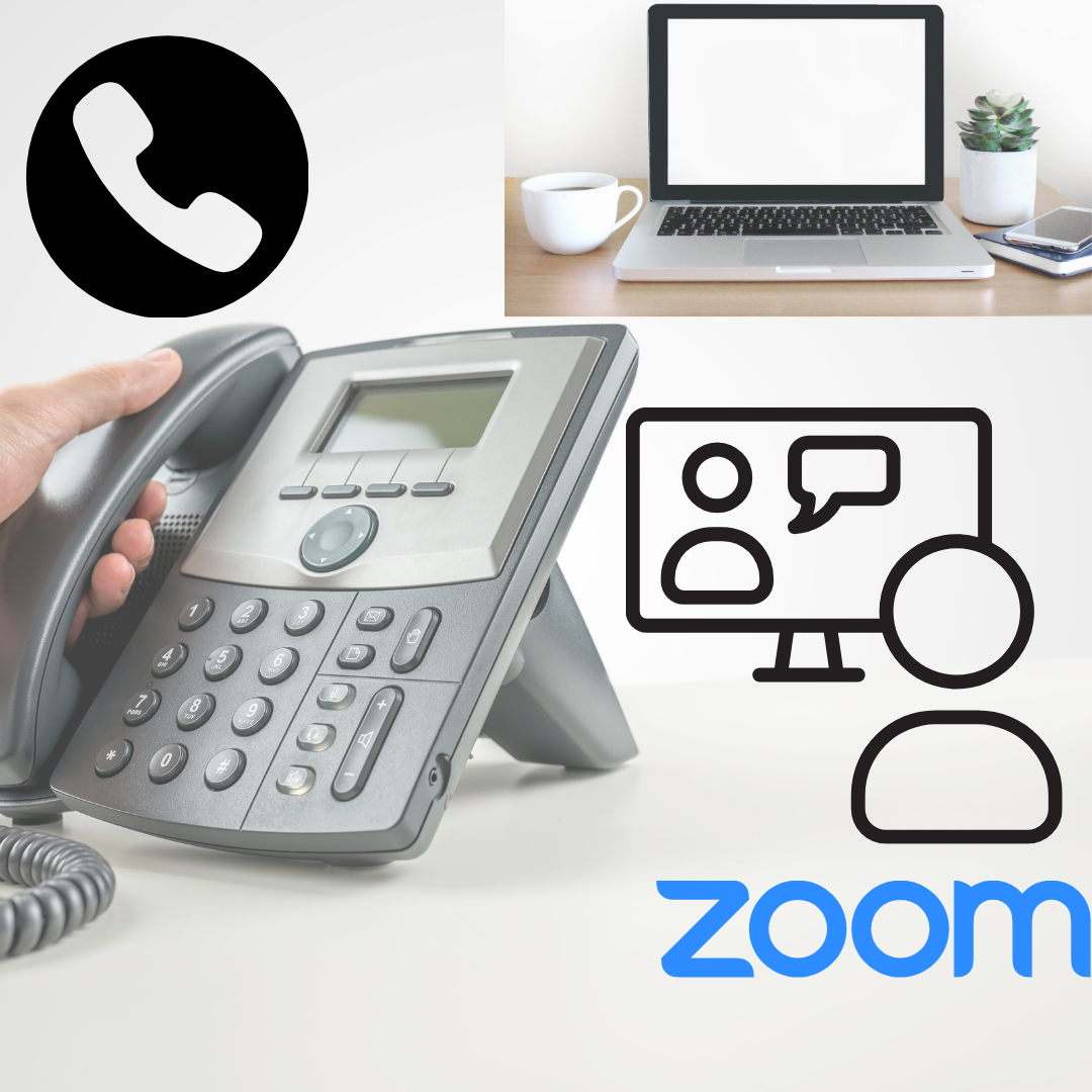 phone or zoom consult