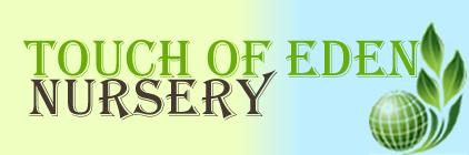 Touch Of Eden Nursery