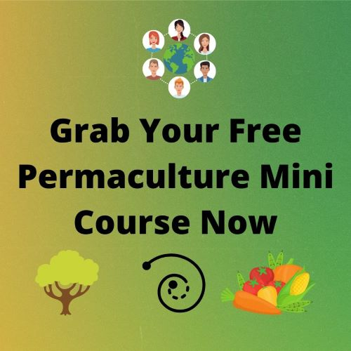 Free Permaculture Mini Course