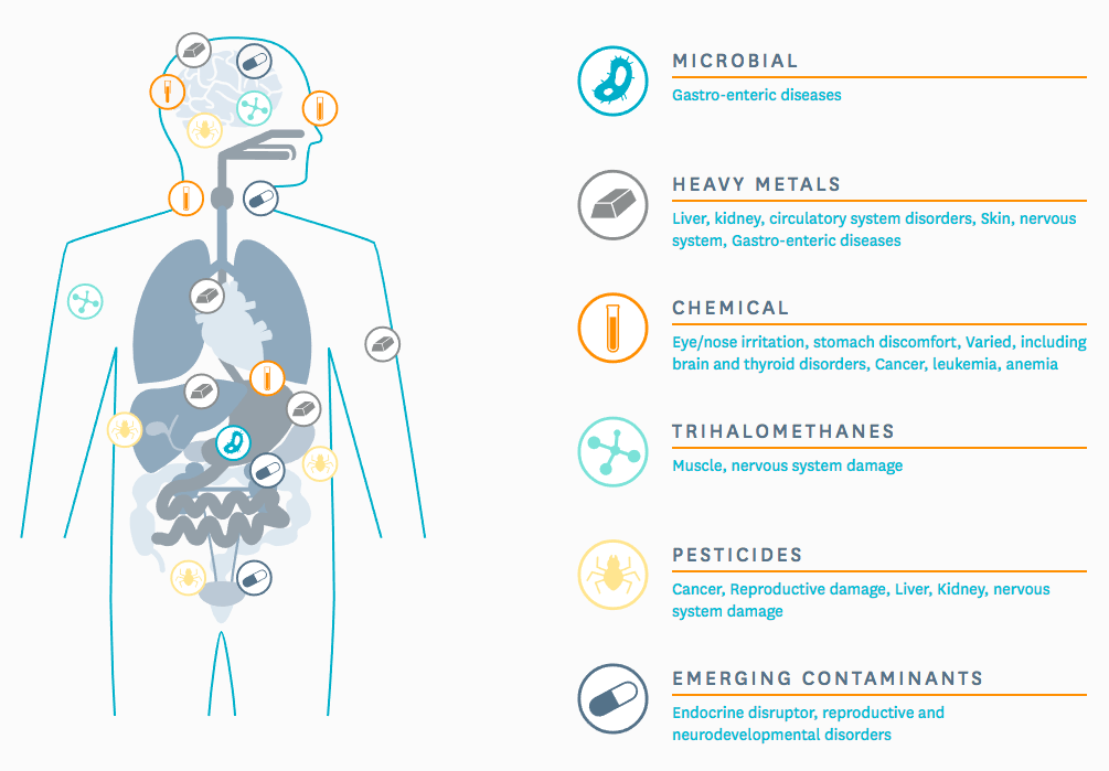 Why should I drink clean water?